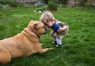 Những điều một chú cún cưng có thể dạy bạn